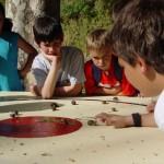 Taradell recupera després de 4 anys el tradicional concurs de grills, cargols i granotes
