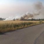 Un petit incendi en un camp agrícola a Montrodon causa l'alarma