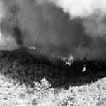 Taradell.com projectarà un reportatge sobre els 30 anys de l'incendi de 1983