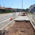 L'Ajuntament canvia els arbres d'un tram de la carretera Viladrau