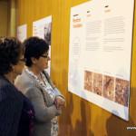Més de 600 persones ja han visitat l'exposició pels 15 anys del Centre cultural Costa i Font