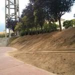 S'arrangen els jardins de can Costa i Font