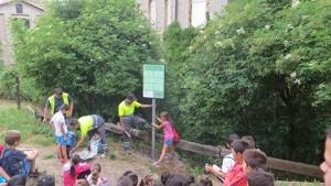 projecte-ambiental-colegi-sant-genis-20152