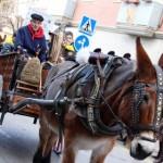 Els Tonis de Taradell obren les festes dels Tres Tombs aquest cap de setmana