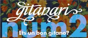 banner gitanari-02