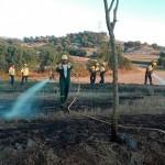Petit incendi agrícola aquest diumenge al vespre a Taradell