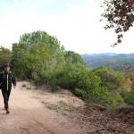 1.146 participants prenen part a la 37a edició de la caminada Rupit-Taradell