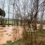 Alerta al barri de Montrodon i a la carretera cap a Taradell per la crescuda del riu Gurri a causa de la pluja