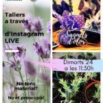 El Parc de les Olors de Taradell proposa uns tallers en línia per seguir a través d'Instagram