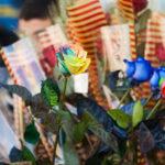 L'Ajuntament de Taradell convoca un concurs popular de fotografia per Sant Jordi