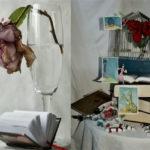Roser Labraña i Mireia Montaña, guanyadores del concurs popular de fotografia de Sant Jordi 2020