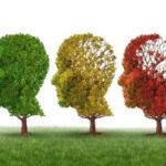 Estratègies per cuidar el benestar emocional
