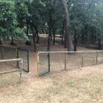 El segon pipican de Taradell s'habilita al bosc del Pujoló i tindrà bancs, il·luminació i font pels gossos